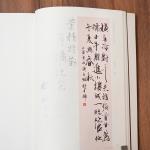 illie於北京國際書法雙年展的得獎作品
